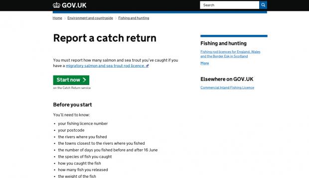 A screen shot of the Rod Catch Returns service